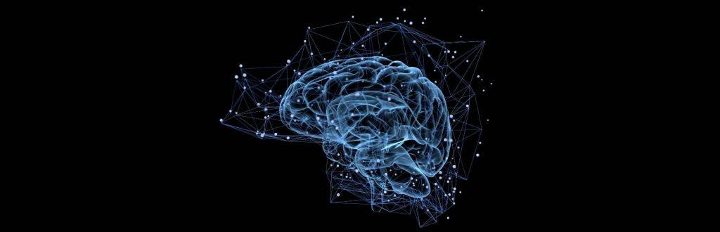 Neurogenesi-cervello-e-attivita-fisica-dr-di-presa-osteopata-livorno-pisa
